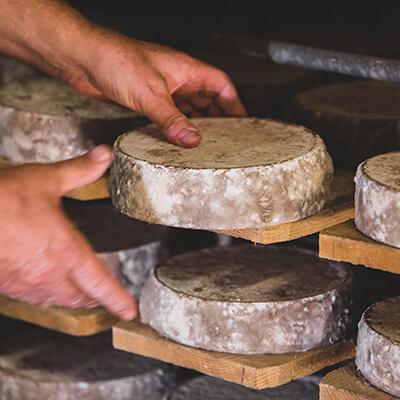 Sélection de fromage par un caviste