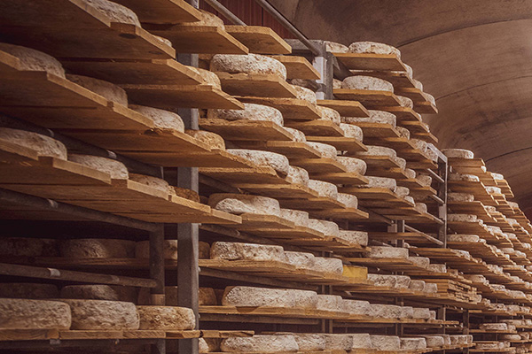 cave d'affinage de fromages d'Alex