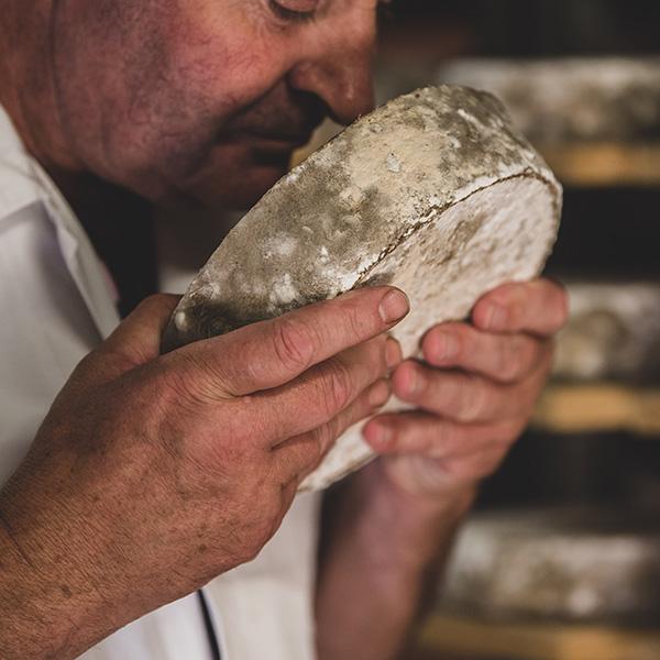 Sélection de fromages par un caviste, sentir le fromage